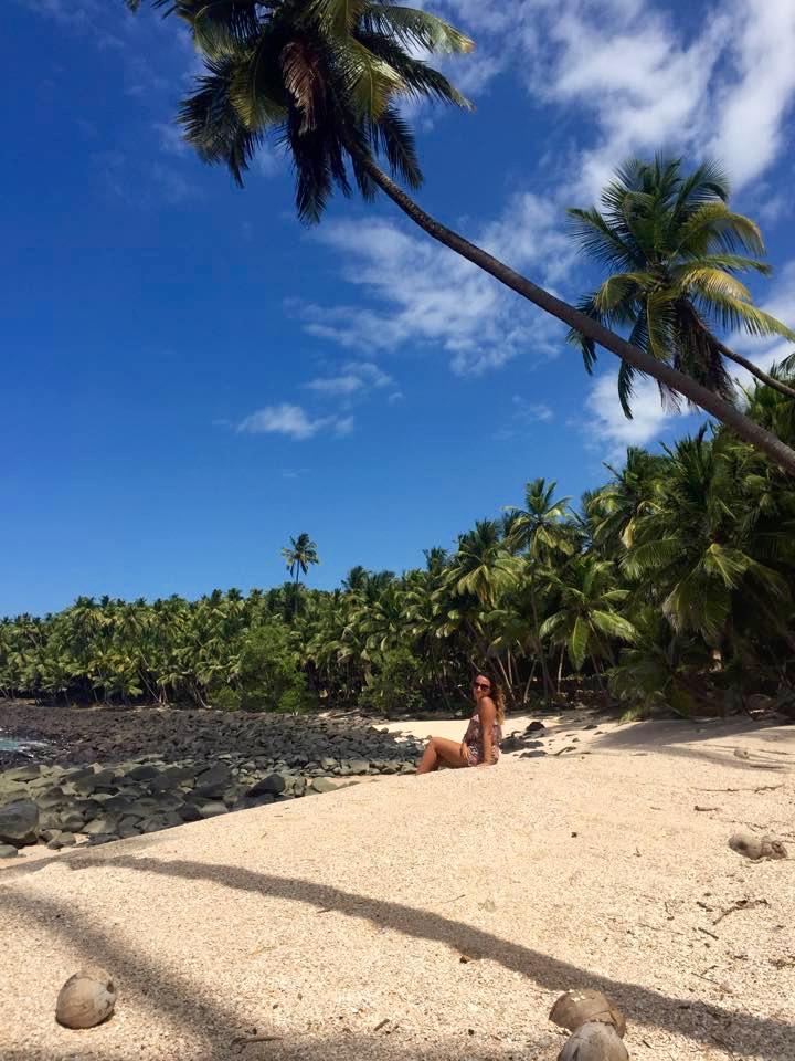 cocotiers-ilesdusalut