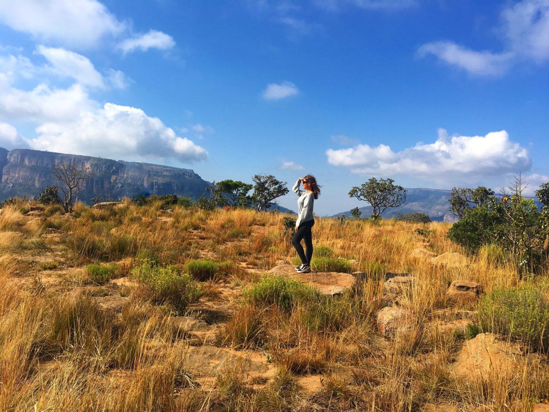 Afrique du Sud : 2 semaines de roadtrip entre savane et océan